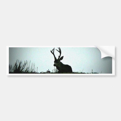 Black Tail Buck Bumper Stickers