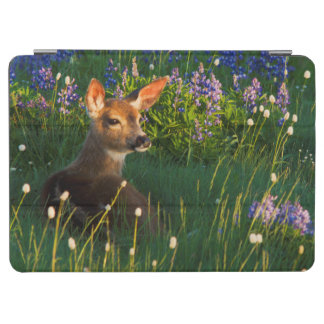 Black-tail Deer Fawn, alpine wildflowers iPad Air Cover