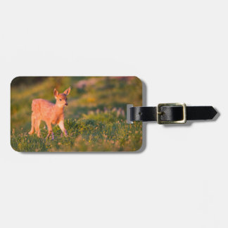 Black-tailed Deer fawn Travel Bag Tag