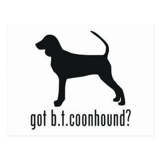 Black & Tan Coonhound Postcard
