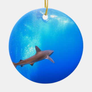 Black-tip reef shark swimming underwater ceramic ornament