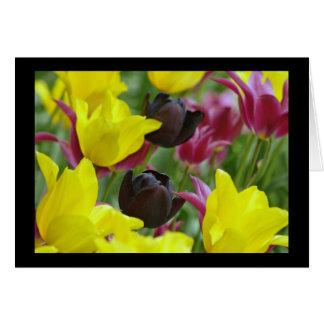 Black Tulip Card