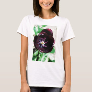 Black tulip macro T-Shirt