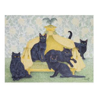 Black velvet postcard
