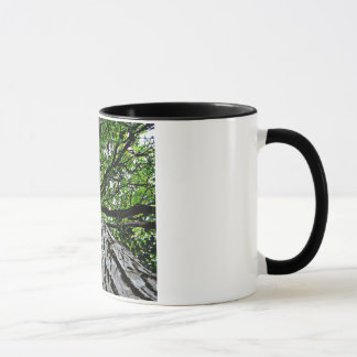 Black Walnut Trunk and Branches Mug