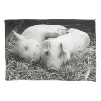 Black & White baby piglets pillow case