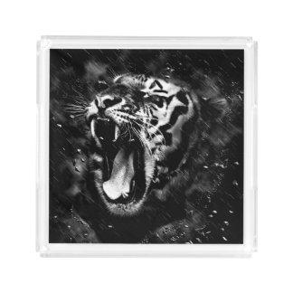 Black & White Beautiful Tiger Head Wildlife Serving Tray