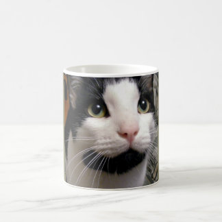 Black & White Cat Coffee Cup