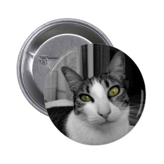 Black White Cat Photo 2 Inch Round Button