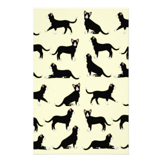 black white cat stationery