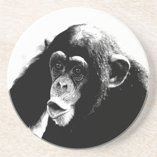 Black White Chimpanzee Coaster