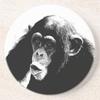 Black White Chimpanzee Drink Coasters