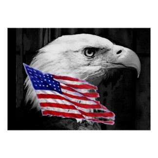 Black White Freedom American Eagle Flag Poster