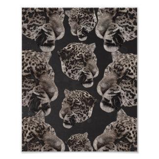 Black&White Grunge Leopard Heads Photo Art