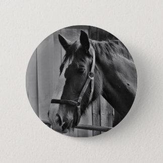 Black White Horse - Animal Photography Art 2 Inch Round Button