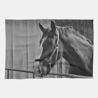 Black White Horse - Animal Photography Art Kitchen Towels