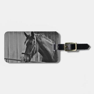 Black White Horse - Animal Photography Art Luggage Tag