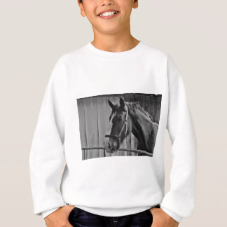 Black White Horse - Animal Photography Art Sweatshirt