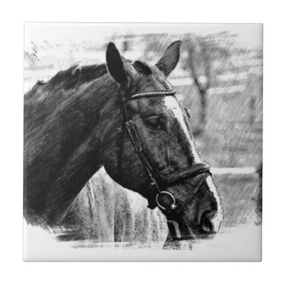 Black White Horse Sketch Tile