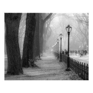 Black & White Landscape in Central Park Photo Print