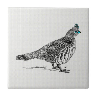 Black & White Line Drawing Wild Bird Tile
