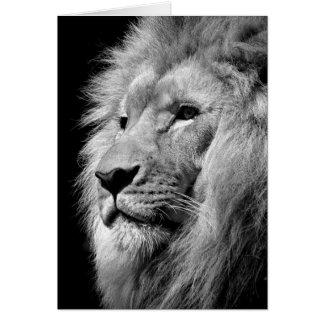 Black White Lion Portrait - Animal Photography Card