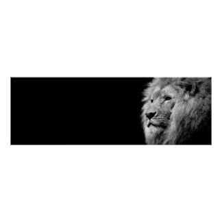 Black White Lion Portrait - Animal Photography Poster