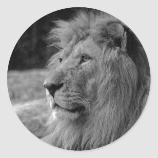 Black & White Lion - Wild Animal Classic Round Sticker