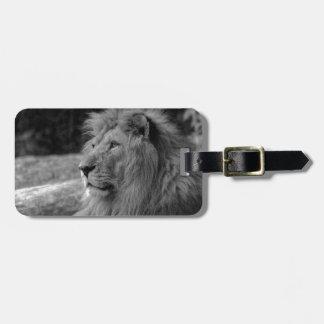 Black & White Lion - Wild Animal Luggage Tag