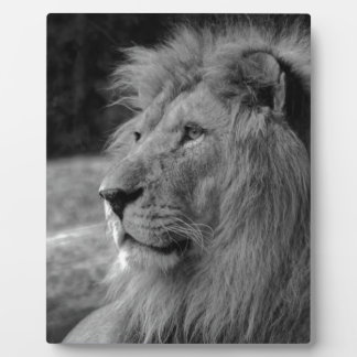 Black & White Lion - Wild Animal Plaque