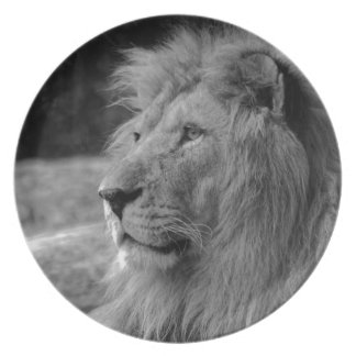 Black & White Lion - Wild Animal Plate