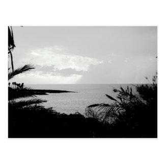 Black & White Ocean View Postcard