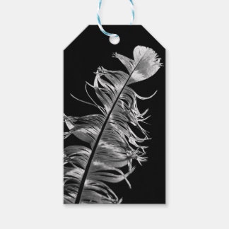 Black & White Photographic Feather Art Gift Tags