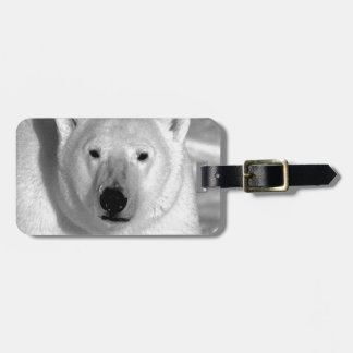 Black & White Polar Bear Luggage Tags