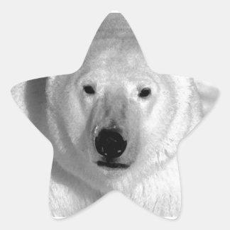 Black White Polar Bear Star Sticker