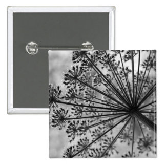 Black & White Queen Anne's Lace Buttons