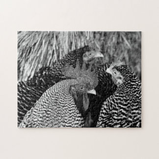 Black & White Rooster & Hens Chicken Puzzle