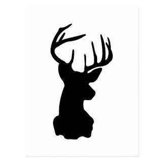 Black & White Stag Head Postcard