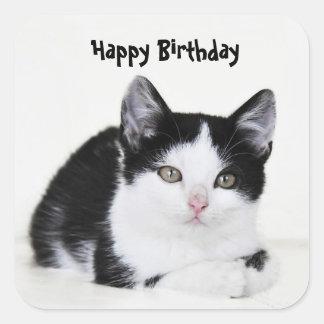 Black White Thoughtful Kitten Sticker