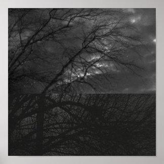 black white trees print