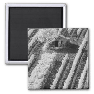 Black & White view of small stone barn Square Magnet