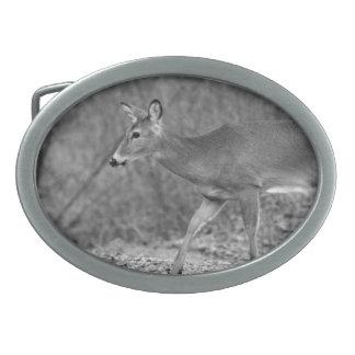 Black & White White-Tailed Deer Belt Buckle