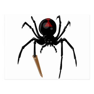 black widow spider postcard