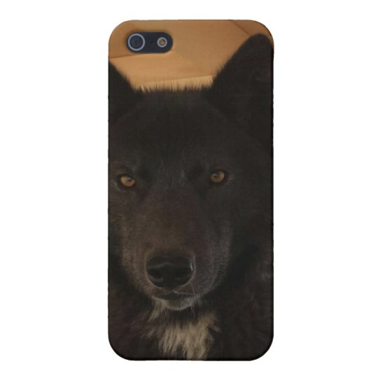 Black Wolf iPhone 5/5S Covers