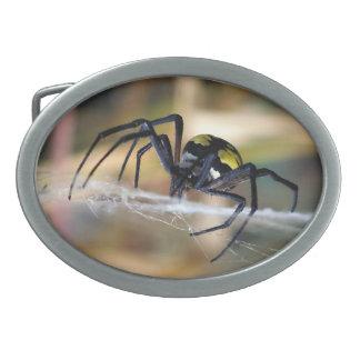 Black & Yellow Argiope Garden Spider Belt Buckle