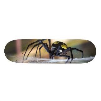 Black & Yellow Argiope Garden Spider Skateboard