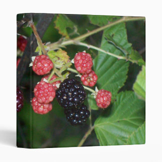 Blackberries at Dusk Binder