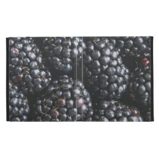 Blackberries iPad Folio Cover