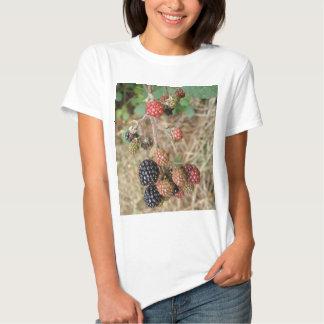 Blackberry Bonanza Ladies T Shirt