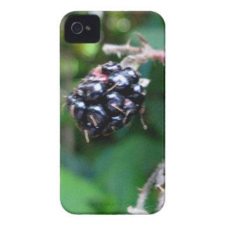 Blackberry for Blackberry iPhone 4 Case